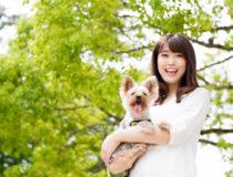 在宅ワーカーにおすすめの犬との暮らし!メリットや注意点を解説